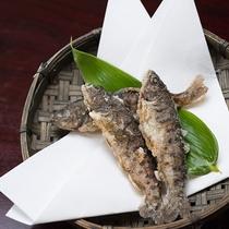*【夕食】「お料理グレードアップ」プランでは、なかなか珍しい山女の稚魚唐揚をご提供!