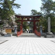 気比神宮【桜】