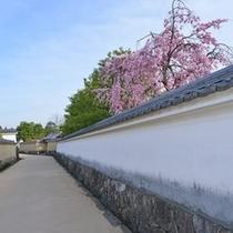 【好古園】白壁のある風景