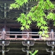 書写山円教寺(摩尼殿2)