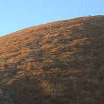 *【秋の大室山】山全体がうっすらと色を変えております。