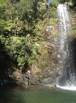 秘境の滝ツアー