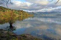 秋の余呉湖