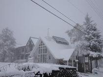 冬のラフォーレシャンピア