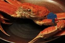 津居山蟹1