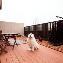 愛犬と泊まれる部屋(ツイン)