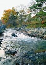 一級河川那珂川沿いの一軒宿