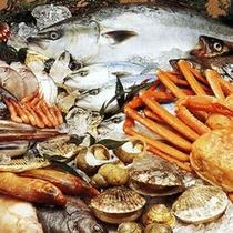 黒部漁港より水揚げされたきときとの魚介
