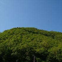 美山の景色