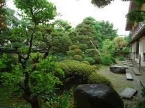 庭のイメージ①