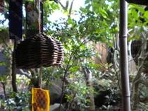 中庭風景(蔓の風鈴)