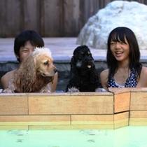 愛犬と一緒に入浴できるドッグSPA