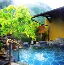 新緑の露天風呂 姫の湯