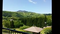 新緑の時期 客室からの眺め2