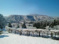 梅川荘玄関からの眺め 冬