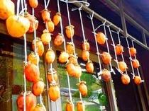【秋】軒先で干し柿!これが年末にあま~くなりますよ♪