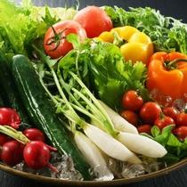 新鮮野菜は、自家菜園で丹精込めて作ったものを中心にお料理に使用しております。