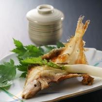 新潟では大変親しまれている柳カレイ。ふっくらした白身。塩焼きでどうぞ。