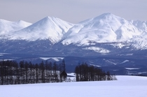 冬の富良野・美瑛 12