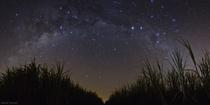 星の多い夜