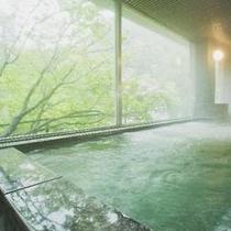 緑豊かな大自然を目の前に!!男性室内風呂男性室内風呂