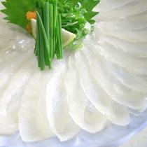 【てっさイメージ】上品で淡白、ツヤツヤの薄造りを贅沢にお楽しみください