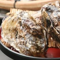 【殻付カキ】「海のミルク」と呼ばれるほど栄養価が高く、健康食材としても人気