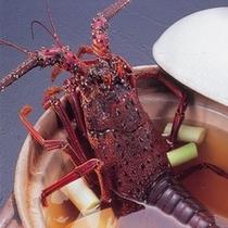スーパープレミアムプランには漁師汁も。主人が10年かけて作り出したダシのおいしさ!絶品と評判!