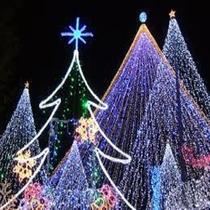 クリスマスは、秀丸花ごころで・・・1