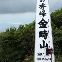 *天下の秀峰「金時山」:頂上の金時茶屋で一休み!
