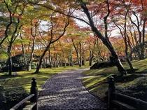 【箱根美術館の紅葉】(例年のみごろ11月上旬)