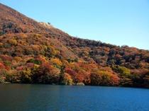 【芦ノ湖の紅葉】(例年のみごろ11月上旬~中旬)