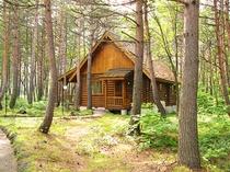 国立公園の自然に囲まれたプライベートコテージ(ログタイプ)外観7