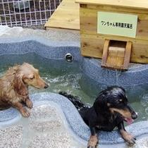 ドッグホテル ペッドリーム・ワンちゃん専用露天風呂