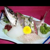 答志島の旬の地魚オンパレード