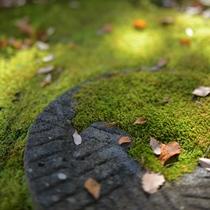 *自然豊かな庭園を眺めながらほっと心が安らぎます。