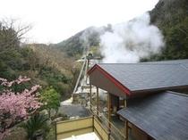 敷地内に湧く100度の自噴泉の湯気