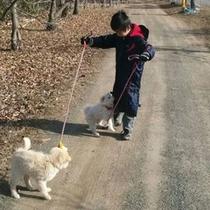 【秩父ふるさと村】犬の散歩