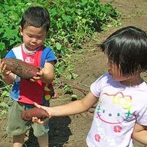 【秩父ふるさと村】野菜収穫体験