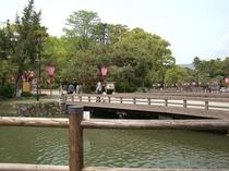 高知城(徒歩7分)