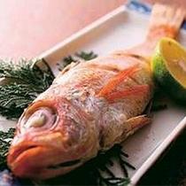 脂がのった高級魚「のどぐろ」。