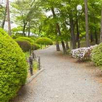 *【施設/散歩道】喧騒を離れて、四季折々の自然が変化をお楽しみください。