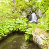 *【施設/散歩道】川のせせらぎや葉擦れ合う音が心地よく響きます。