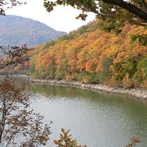 ■【秋】紅葉(琵琶池)