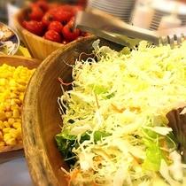 ■お野菜もたっぷりご用意しております。(夕食バイキングメニュー一例)