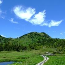 ■【夏】四十八池湿原。空の青に心奪われます