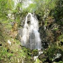 まぼろしの滝(ゴールドライン)