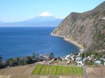 煌めきの丘より井田菜の花畑
