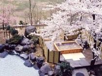 檜露天『桜の湯』