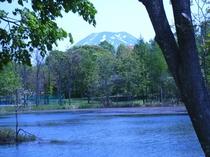 沼越しに見る羊蹄山